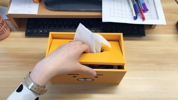 kakaofriends面紙盒_02