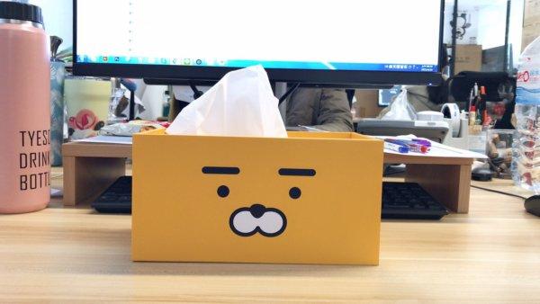 kakaofriends面紙盒_11