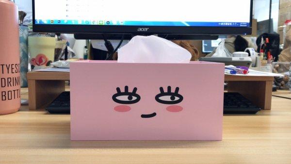 kakaofriends面紙盒_13